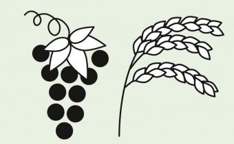 Dupont Pflanzenschutz